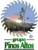 Grupo Pinos Altos